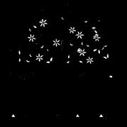 IIMA_Logo