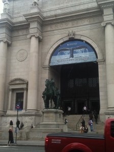 The Museum of Natural History - A must see, according to most tourists and New Yorkers