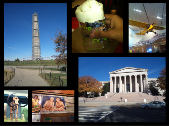 Top L and clockwise: Washington Monument, California Burrito, exhibit at the Air & Space Museum, Supreme Court, exhibit at the National Postal Museum, exhibit at the Museum of Natural history